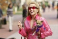 Legally Blonde 2001 movie screen 1.jpg