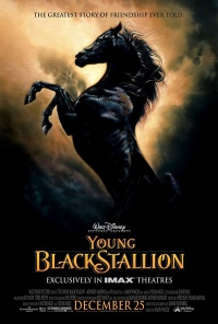 Young Black Stallion The 2003 movie.jpg