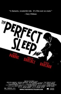 The Perfect Sleep 2009 movie.jpg