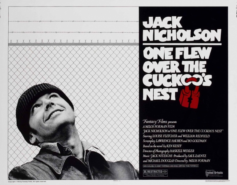 an analysis of the movie one flew over the cuckoos nest Home → sparknotes → literature study guides → one flew over the cuckoo's nest how to write literary analysis order one flew over the cuckoo's.